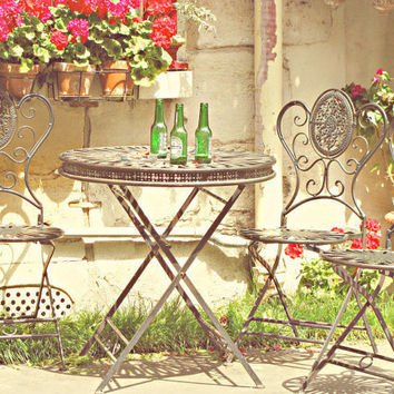 Outdoor Cafe, Paris - 8x10 Art Photo, Heineken Beer, Red Flowers, Bistro Table Seating, Wrought Iron, Grass, Lunch, Whimsical, French