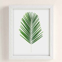 Miles Of Light Palm Art Print