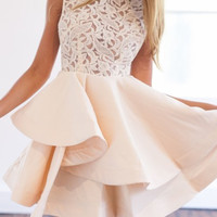 Beige Sheer Lace Crochet Tiered Skater Dress
