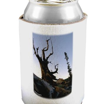 Colorado Mountain Scenery Can / Bottle Insulator Coolers by TooLoud