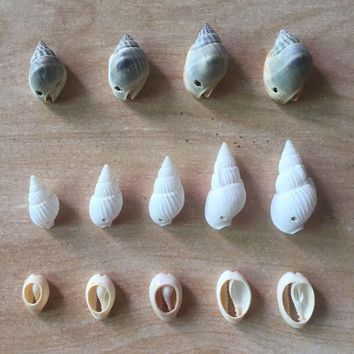 60pcs Mix Different Shape And Size Spiral Shell Beads for DIY Jewelry Making Dyed Cowrie Shells Seashell