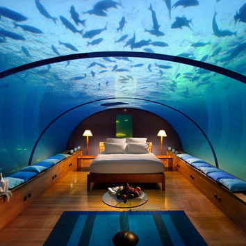 Home Design Collection » Amazing Underwater Bedroom Decorating