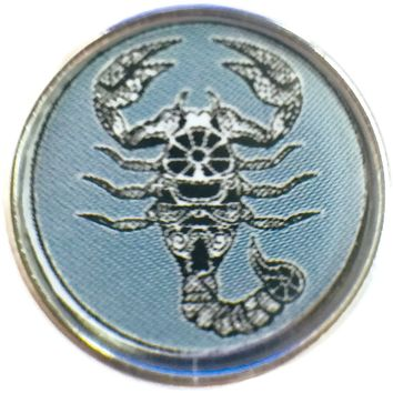 Scorpio Scorpion Zodiac Sign Horoscope Symbol 18MM - 20MM Charm for Snap Jewelry New Item