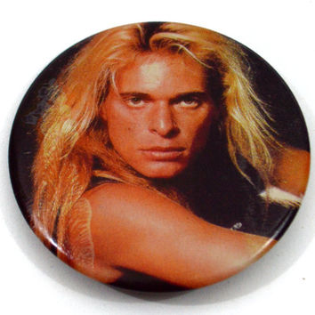 Vintage 80s David Lee Roth Sexy Badge Pinback Button Pin
