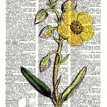 Vintage Prints: Yellow Flower Print On Upcycled Dictionary Page