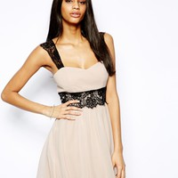 Elise Ryan Skater Dress with Lace Detail - Nude/black