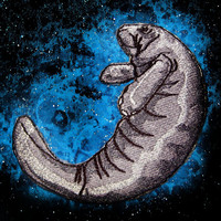 Adorable Manatee Iron on patch