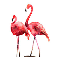 Flamingos Bird Watercolor Illustration Print Pink Red Brown Feather Nature