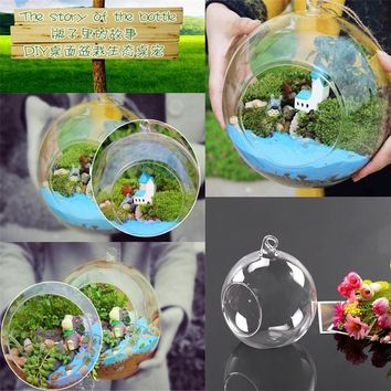 Creative Hanging Glass Ball Vase Flower Plant Pot Terrarium Container Decor  ORG