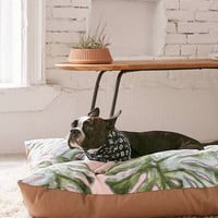 Madart Inc. For Deny Tropical Fusion Pet Bed | Urban Outfitters