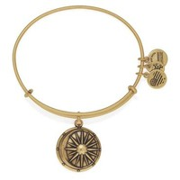 Alex and Ani Cosmic Balance Charm Bangle - Rafaelian Gold Finish