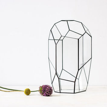large irregular geometric terrarium / handmade glass terrarium / planter for indoor gardening / geometric orchid planter