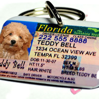 Lousiana Driver License Pet ID Tag Double Sided with your pet info and photo by ID4Pet