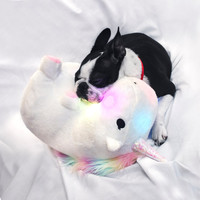 Chubby Light-Up Unicorn | FIREBOX