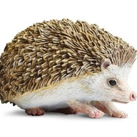 Safari Hedgehog