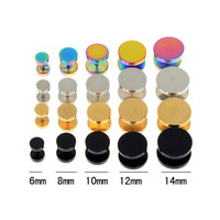 Surgical Steel Cheater Ear Plugs Earrings 2Pcs 4 Colors