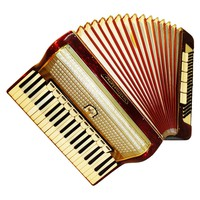 German Weltmeister, 120 Bass, 16 Registers, Piano Accordion Instrument (486)
