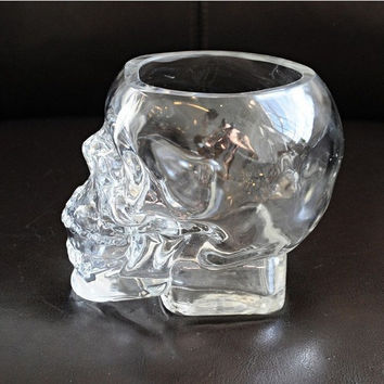 Glass Skull Planter  -- Wine Glass -- Succulents Pot -- Cactus Container -- Water / Air Plant
