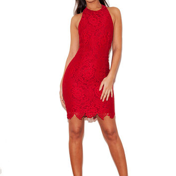 Clothing : Bodycon Dress : 'Mialy' Deep Red Stretch Lace Halterneck Dress