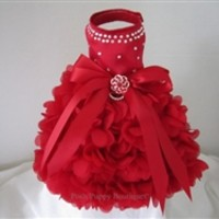 Couture Crystals and Satin Dress-Red Hearts- Apparel - Dress Posh Puppy Boutique
