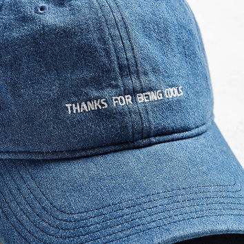 Barney Cools Thanks Denim Baseball Hat - Urban Outfitters