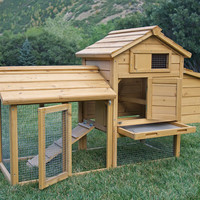 The Saloon Backyard Chicken Coop | Chicken Saloon