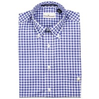 Button Down in Royal Blue Small Gingham by Cotton Brothers