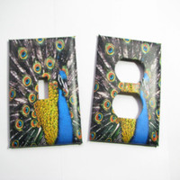 Light Switch Cover Set - Light Switch Plate Peacock Feather
