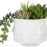 MyGift 4-Inch White Ceramic Guanyin Multi-Face Succulent Planter Vase