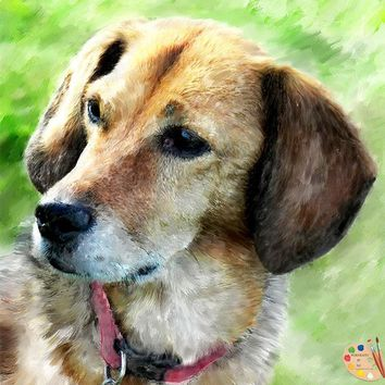 Beagle Dog Portrait 368