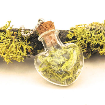 Moss Heart Bottle Necklace, Terrarium Necklace, Eco Friendly, Living Plant Jewelry, Terrarium, Moss Jewelry