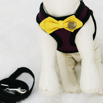 Purple Dog Harness with Yellow bow and a black leash