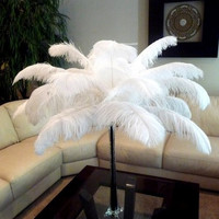 100pcs  ostrich feathers,wedding table centerpiece,wedding table decoration,ostrich centerpiece,ostrich feather centerpiece