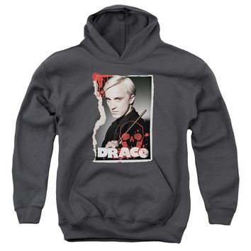Harry Potter - Draco Frame Youth Pull Over Hoodie