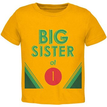 Crayon Big Sister of 1 Toddler T Shirt