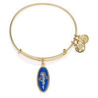 Deep Mystery Aster Charm Bangle