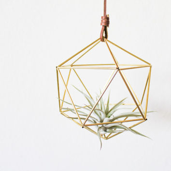 Himmeli fig. 5 - Brass Orb | Modern Minimalist Geometric Hanging Ornament, Mobile, Desk Ornament, Centerpiece and Air Plant Holder