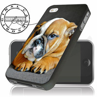 English Bulldog Puppy iPhone 4s iPhone 5 iPhone 5s iPhone 6 case, Samsung s3 Samsung s4 Samsung s5 note 3 note 4 case, Htc One Case