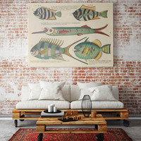 Fish Poster| Sea Life Art| Taxonomy Wall Art| Fishes Wall Art| Fishes Print| Animal Poster| Natural History| Vintage Zoology| HAP012