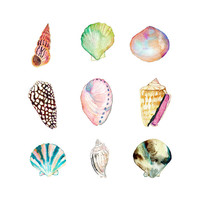 Sea Shell Collection Watercolor Print.  Beach House Decor.