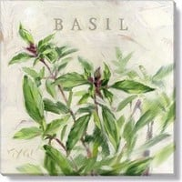 Gallery Wrap on Wood Frame ~ Basil