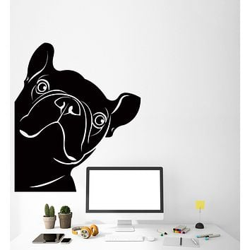 Vinyl Wall Decal Funny French Bulldog Pet Shop Dog Stickers (2720ig)