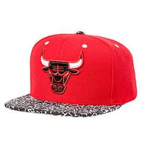 The Chicago Bulls Hardwood Classic In The Stands Snapback Cap in Red & Black