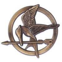 Hunger Games Cake Decorating Plaque - 1 pc