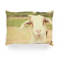 """Angie Turner """"Happy Goat"""" Smiling Animal Oblong Pillow"""