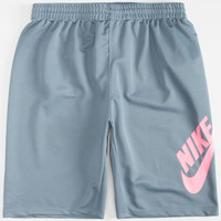 Nike Sb Mesh Swoosh Boys Dri-Fit Shorts Grey  In Sizes