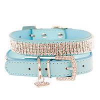 Aqua Blue Diamante Dog Collar | Chihuahua Clothes and Accessories at the Famous Chihuahua Store!