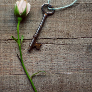 Skeleton key photograph, still life, romantic art, rose, rustic art, french country, antique key print, girly art,fine art photo,8x10,11x14