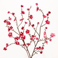 Pink Velvet Plum Blossoms, Set of 2 - World Market