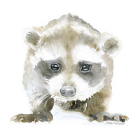 Baby Raccoon Watercolor
